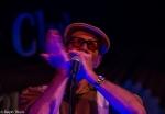 Mark Hummel & The Blues Survivors (USA)