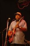 The 100% Chicago Blues Tour